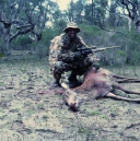 shanes-deer-2